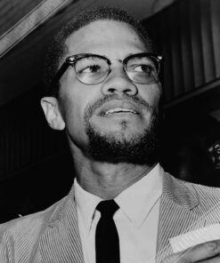 Malcolm X Poster Main Image